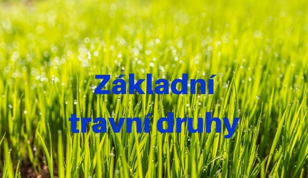 Základní travní druhy
